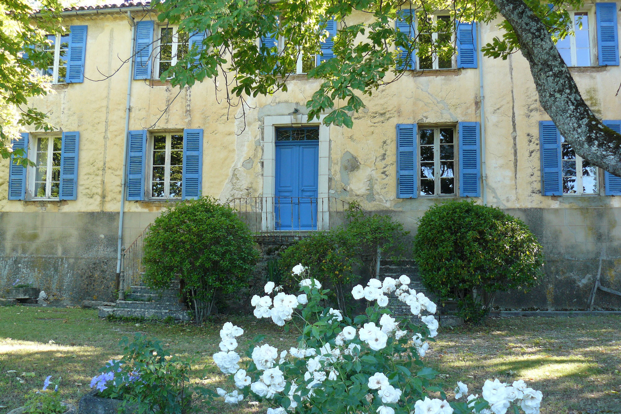 Vip real estate : Vignoble de charme