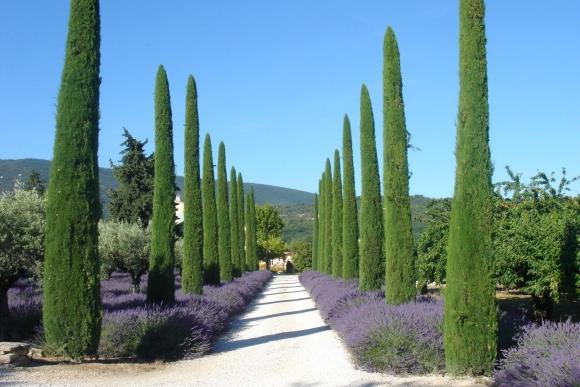 propriétés en Provence et côte d'Azur